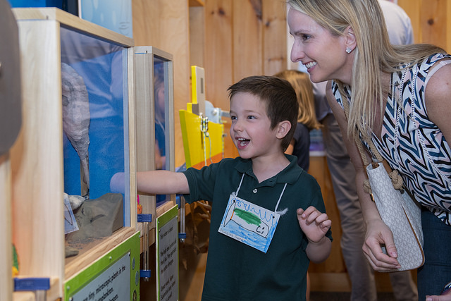 PreK Hosts STEAM Exhibit at Earthplace